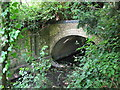 TQ3769 : The Beck entering a culvert under Kelsey Park Road by Mike Quinn