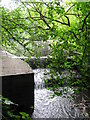 TQ3769 : Weir at the northern end of the lake in Kelsey Park by Mike Quinn