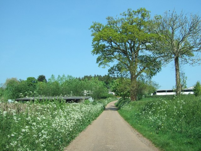 Road to Lower Creedy