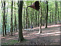 TR0351 : King's Wood:  Loud speaker sculpture : Week 17