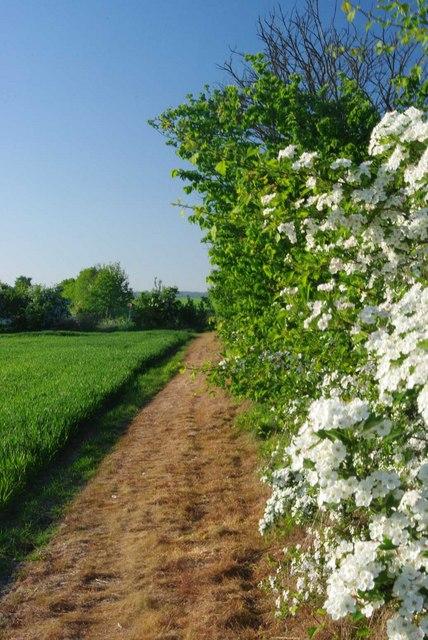 Towards Parker's Farm Road
