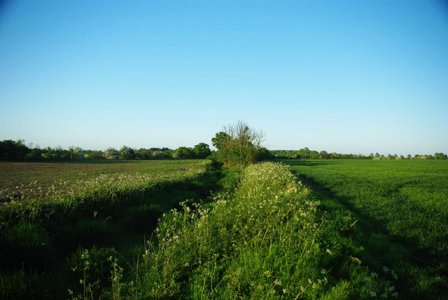 Ditch Near Fen Covert