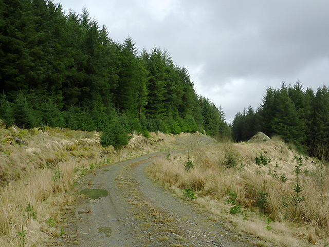 Forestry road on Esgair Gors, Ceredigion
