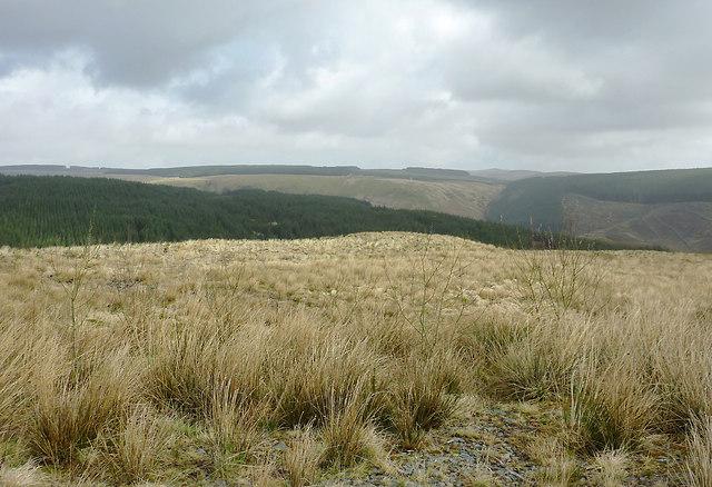 Elenydd landscape from Esgair Gors, Ceredigion