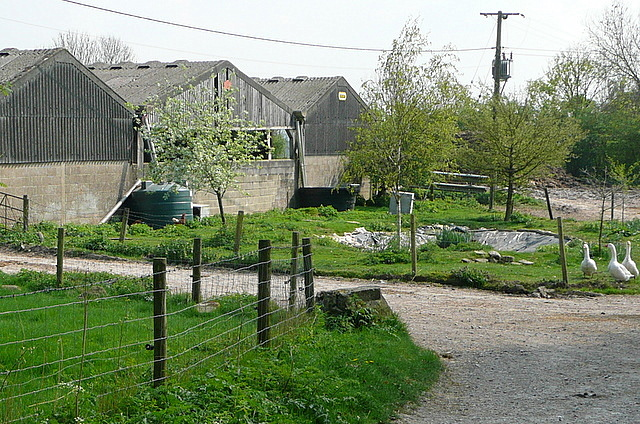 Woodgarston Farm