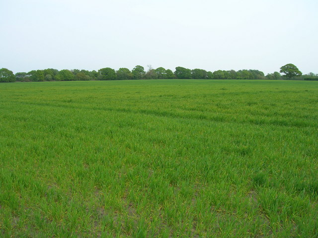 Farmland near Langwith Lodge