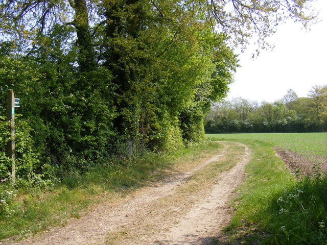 Footpath to Glemham Road