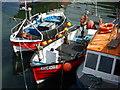 NT6879 : Coastal East Lothian : Alba, Kayla Dawn and Lona M at Victoria Harbour, Dunbar by Richard West