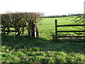 NZ2407 : Hand gate near New Hinkle Plantation by Miss Steel