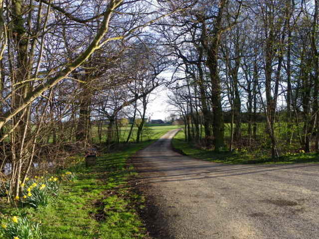 Drive to West Vince Moor