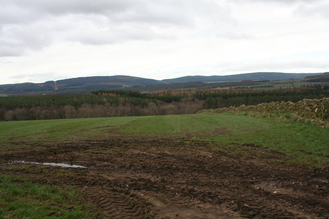Field above Crathes