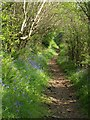 SX6861 : Bridleway above the Avon valley by Derek Harper