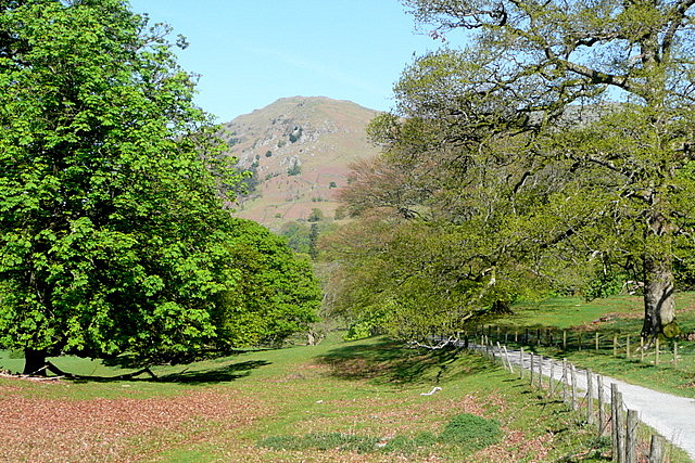 Footpath through Rydal Park
