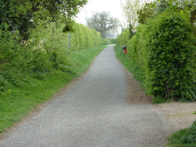 The Bridleway