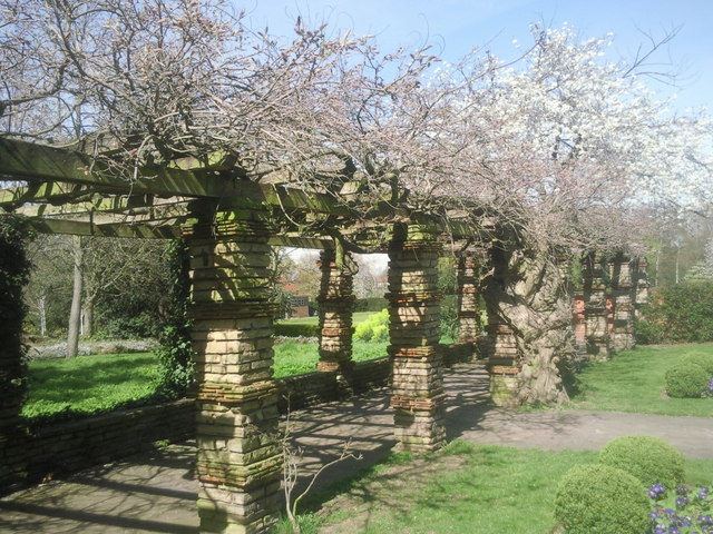 Pergola at Well Hall Pleasaunce