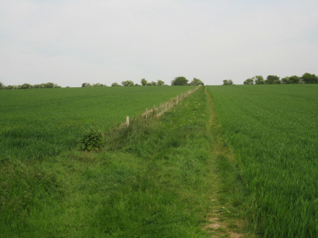 Path between Mapledurwell and Up Nately