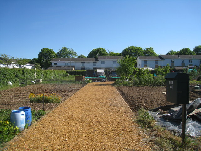 Allotments in Popley