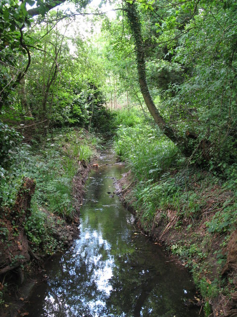 The Beck south of Cresswell Road, BR3 (2)