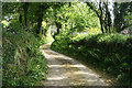 SX1173 : Blisland: approaching Durfold by Martin Bodman