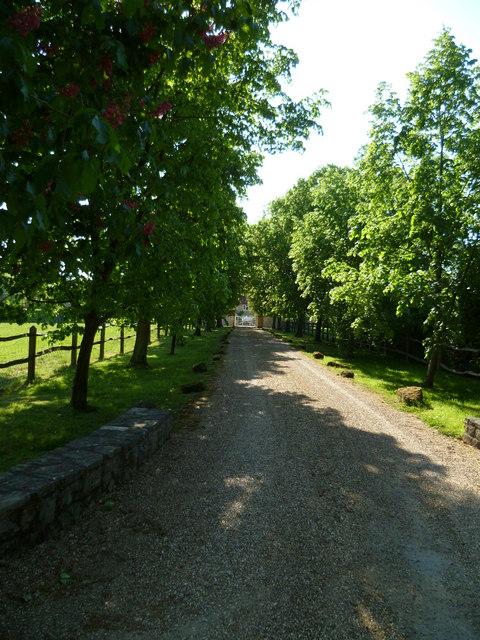 Driveway at Pallingham Lock Farm