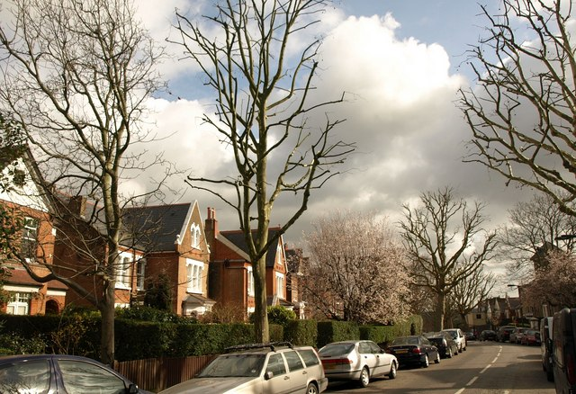 Grove Park, Camberwell