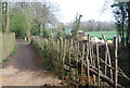 TQ0231 : Fencing by the Wey South Path, Shortlands lock by N Chadwick