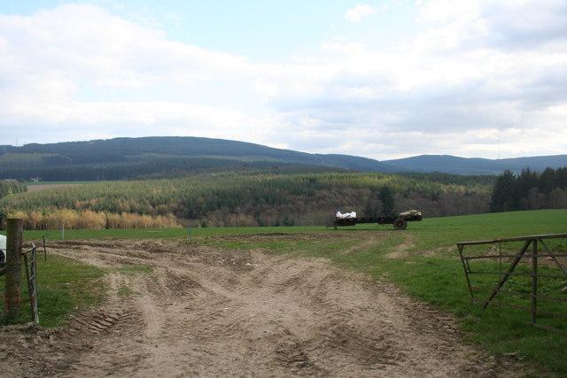 Meikledams Field