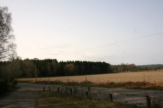 Ley Fields and Woodland