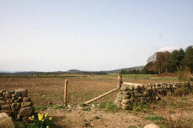 Drumfrennie Field