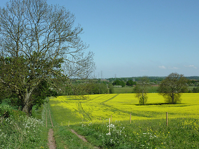 Farmland north of Ashwood, Staffordshire