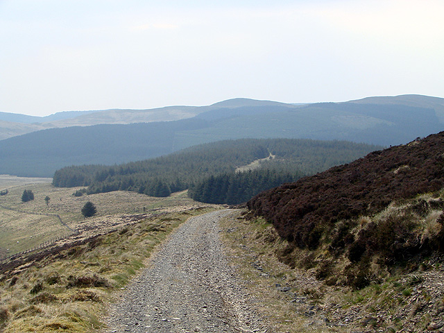 Descending towards the forestry at Esgair y Ffordd