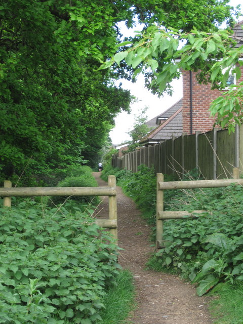 Tytherington Wood