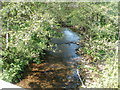 ST2890 : Bettws Brook flows towards Lambourne Way, Newport by Jaggery