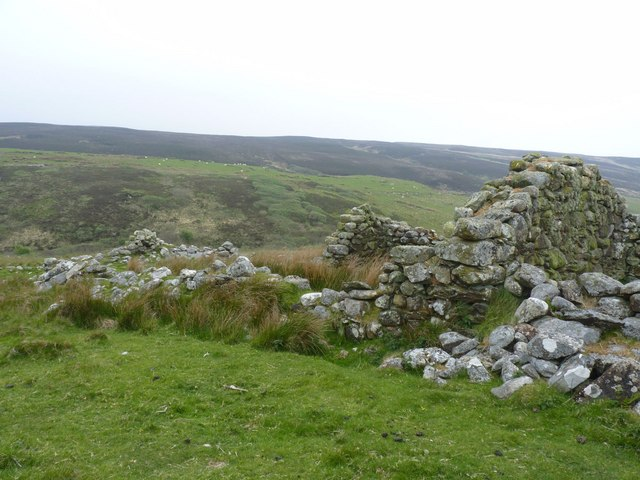 Ruins east of Grasdale, Islay