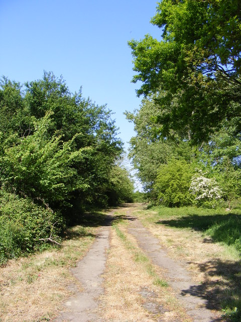 Access Track through Clare's Wood