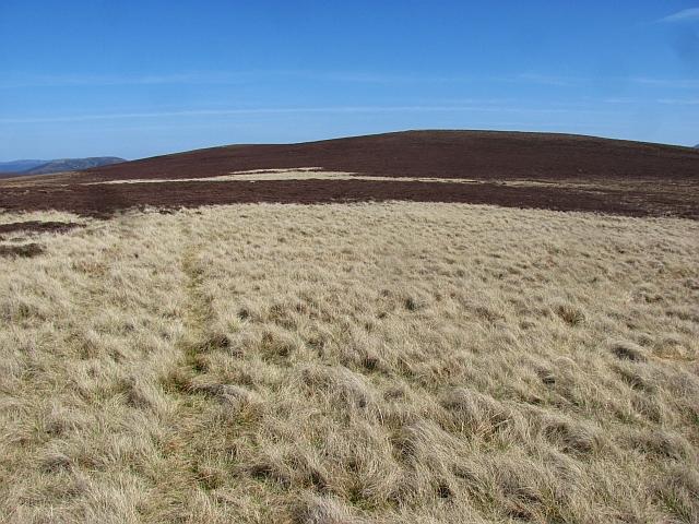 Grassy area, Bràigh Coire Caochan nan Laogh