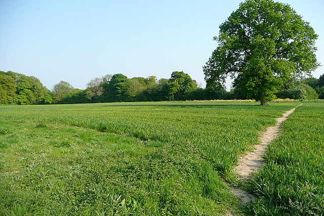 Footpath from Hampden House