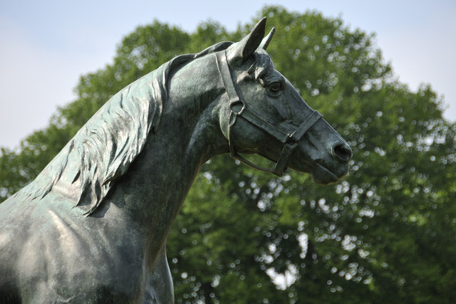 Persimmon - statue head