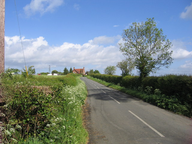 Picton Lane looking north
