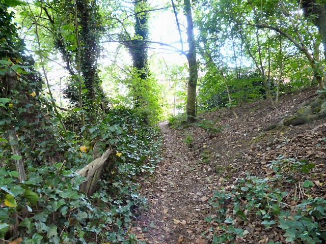 Godley Hill Footpath