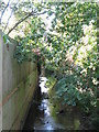 TQ3974 : The Quaggy River, Manor House Gardens (2) by Mike Quinn