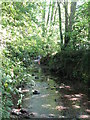 TQ3974 : The Quaggy River, Manor House Gardens (3) by Mike Quinn