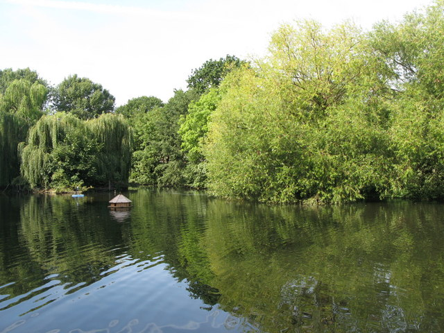 The lake in Manor House Gardens (3)