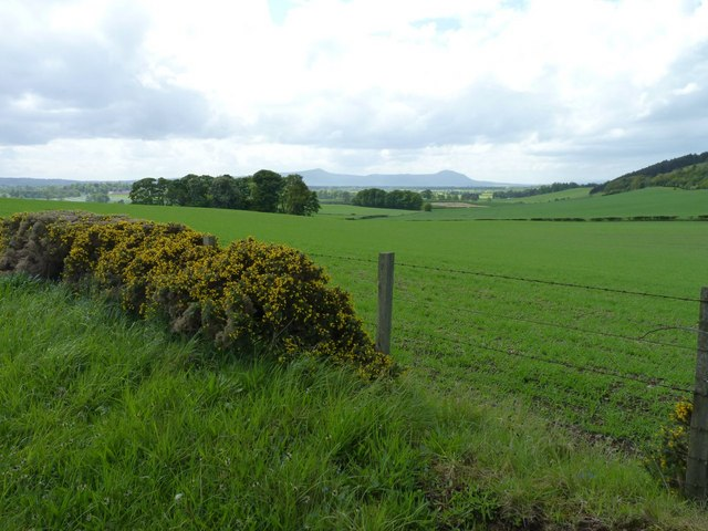 Farmland near Mount Hill