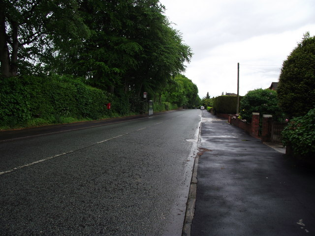 Stitch-Mi-Lane, Harwood