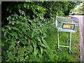 SX8966 : Comfrey and trolley, The Willows by Derek Harper