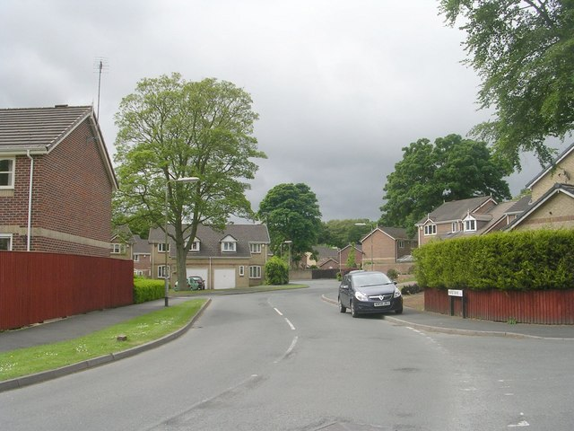 Maple Drive - Chapel Lane