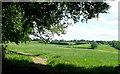 SU7991 : Towards Muswell Farm by Graham Horn