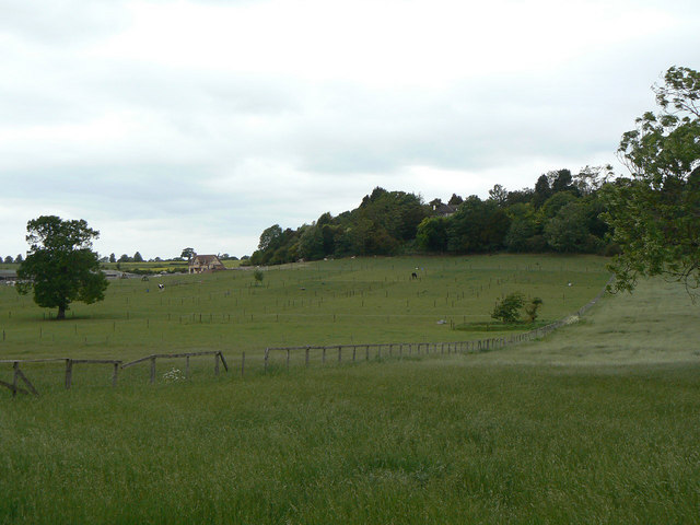 Watchbury Hill