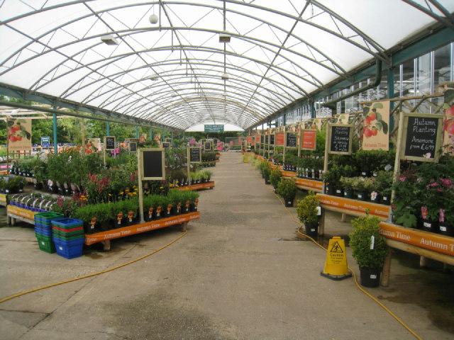 Garden Centre: Inside Royston Garden Centre (C) Logomachy :: Geograph